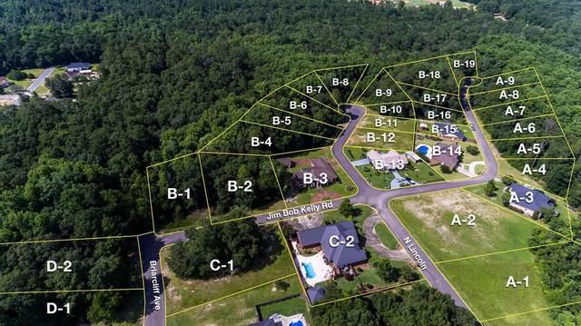 0 Jim Bob Kelly Rd Lot B18, Geneva, AL 36304 (MLS #183732) :: Team Linda Simmons Real Estate