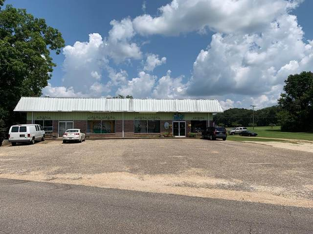 216 N Cty. Rd. 33, Ashford, AL 36312 (MLS #183746) :: Team Linda Simmons Real Estate