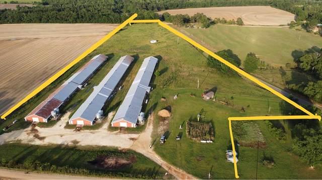 2067 County Road 44, Hartford, AL 36344 (MLS #183901) :: Team Linda Simmons Real Estate