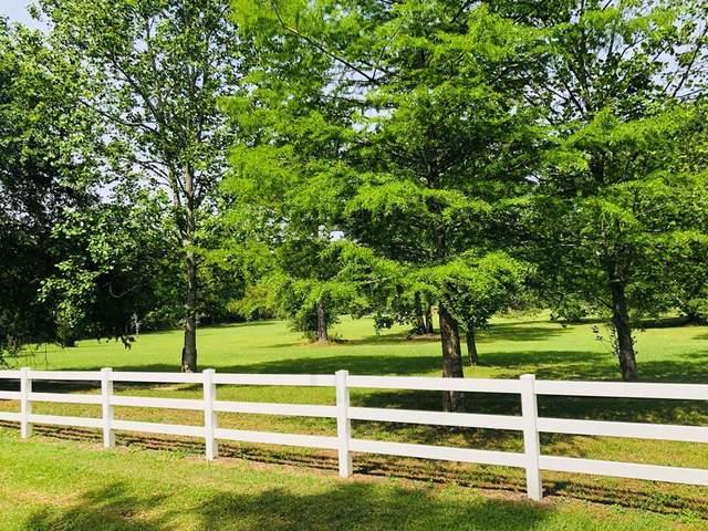 95 Williamson Way, Rehobeth, AL 36301 (MLS #183941) :: Team Linda Simmons Real Estate