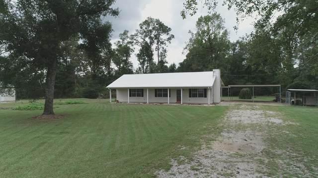 148 NE Dempsey Road, Ashford, AL 36312 (MLS #184090) :: Team Linda Simmons Real Estate