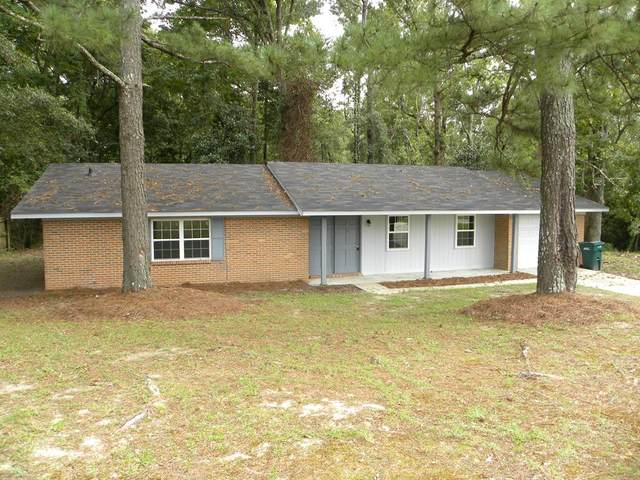 209 Spruce Lane, Ozark, AL 36360 (MLS #184176) :: Team Linda Simmons Real Estate