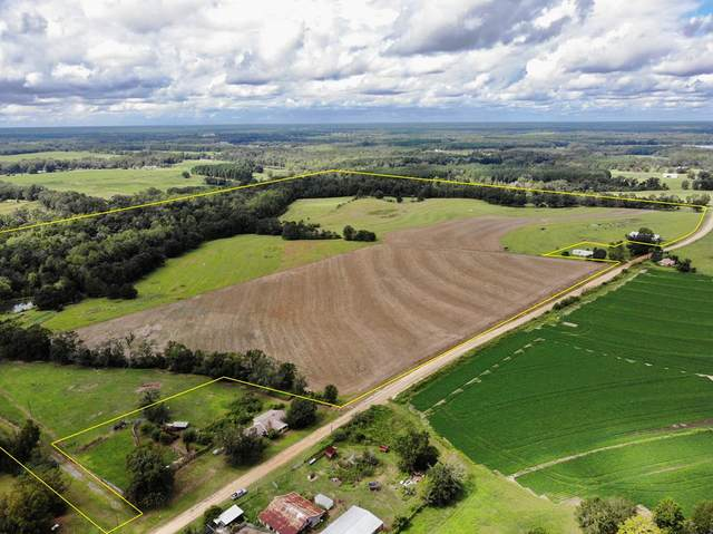137 acres S Park Road, Slocomb, AL 36375 (MLS #184208) :: Team Linda Simmons Real Estate