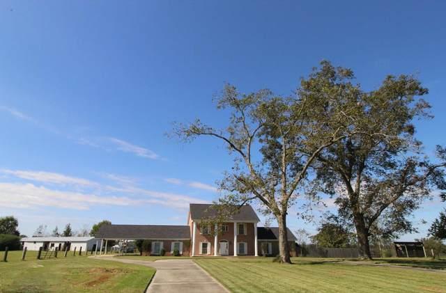 3203 N County Rd. 9, Dothan, AL 36305 (MLS #184447) :: Team Linda Simmons Real Estate