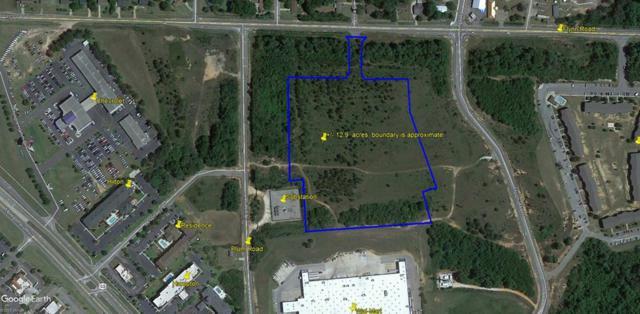 tbd Murphy Mill Road, Dothan, AL 36303 (MLS #156352) :: Team Linda Simmons Real Estate