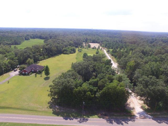 3.4+-ac George Rd, Dothan, AL 36301 (MLS #170135) :: Team Linda Simmons Real Estate