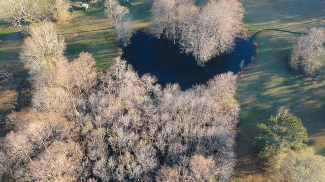 374 Taylor Road, Dothan, AL 36301 (MLS #170648) :: Team Linda Simmons Real Estate