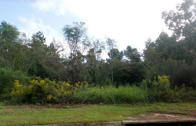 0 Old Mill Run, Dothan, AL 36303 (MLS #171180) :: Team Linda Simmons Real Estate
