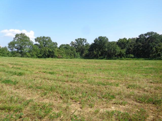 6641 Lot 6, Eddins Rd, Dothan, AL 36301 (MLS #173252) :: Team Linda Simmons Real Estate