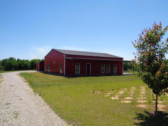 11001 George H Grimsley Hwy (Hwy 95), Columbia, AL 36319 (MLS #173517) :: Team Linda Simmons Real Estate