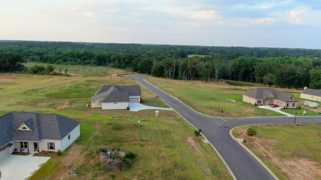 105 Laney Lane, Dothan, AL 36305 (MLS #173921) :: Team Linda Simmons Real Estate