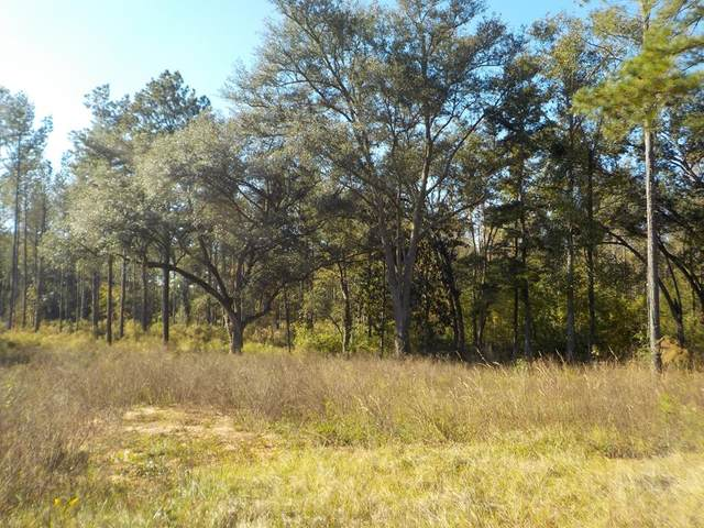 17.9+-ac Sealy Springs Rd/State Line Rd, Cottonwood, AL 36320 (MLS #174079) :: Team Linda Simmons Real Estate