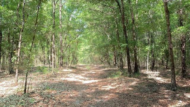 663 acre Jessie O Lewis Drive, Bonifay, FL 32425 (MLS #175509) :: Team Linda Simmons Real Estate