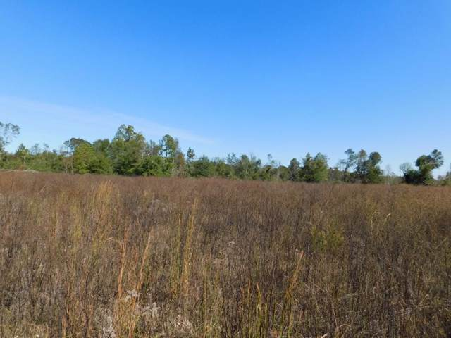 0 Hill Ricks, Eufaula, AL 36027 (MLS #175831) :: Team Linda Simmons Real Estate