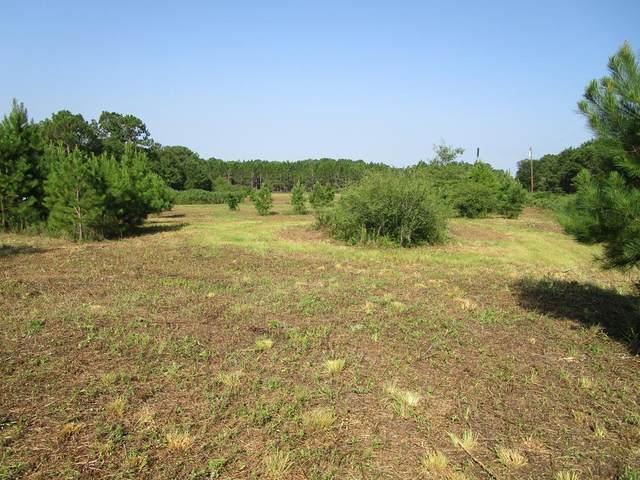 2226 Randall Wade Rd, Headland, AL 36345 (MLS #178452) :: Team Linda Simmons Real Estate