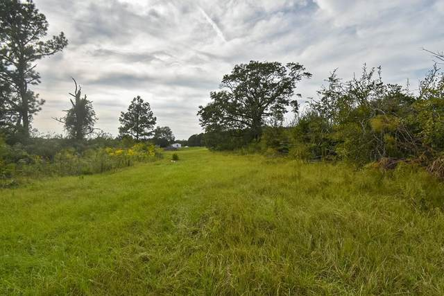 0 Battles Road, Avon, AL 36312 (MLS #179363) :: Team Linda Simmons Real Estate