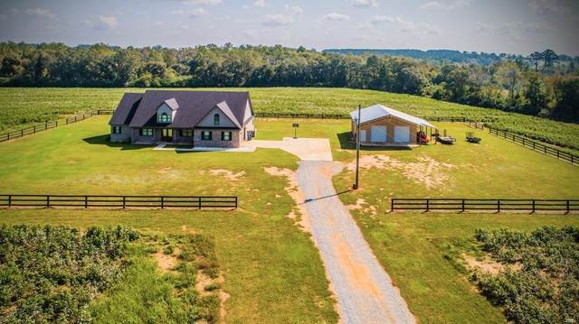 1243 Silcox Road, Ashford, AL 36312 (MLS #180553) :: Team Linda Simmons Real Estate