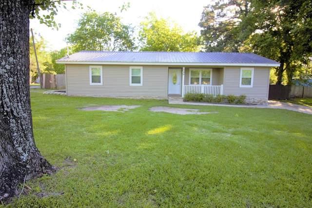 544 Troy Edmundson, Daleville, AL 36322 (MLS #182516) :: Team Linda Simmons Real Estate