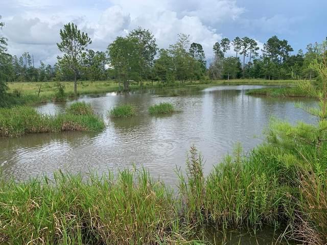 0 Highway 53, Cottonwood, AL 36320 (MLS #182768) :: Team Linda Simmons Real Estate