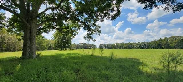 10.5 Acres E County Rd 4   (10.5 Acres), Slocomb, AL 36375 (MLS #184005) :: Team Linda Simmons Real Estate