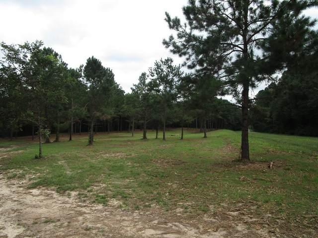 TBD County Road 17, Headland, AL 36345 (MLS #184110) :: Team Linda Simmons Real Estate