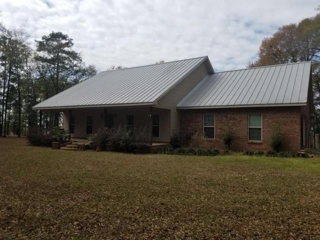 2179 County Road 33, Ozark, AL 36360 (MLS #172897) :: Team Linda Simmons Real Estate