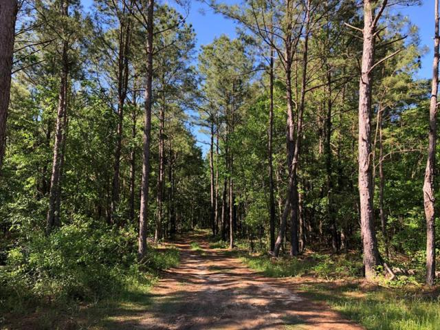 10.5 AC Green Road, Dothan, AL 36303 (MLS #173419) :: Team Linda Simmons Real Estate