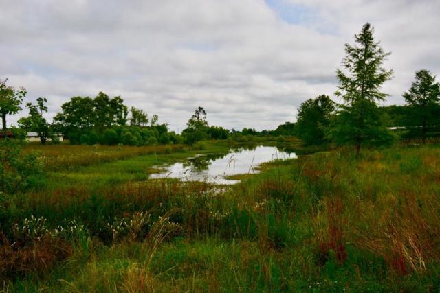 1726 Lonnie Road, Cottonwood, AL 36320 (MLS #173686) :: Team Linda Simmons Real Estate