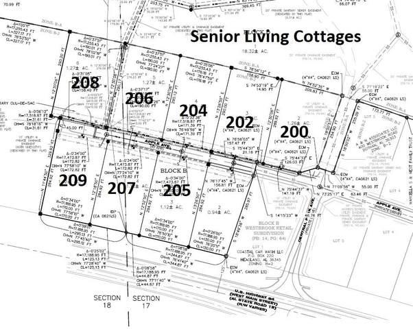 207 Apple Avenue, Dothan, AL 36303 (MLS #174613) :: Team Linda Simmons Real Estate
