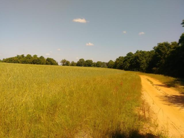 0 NW County Road 16, Midland City, AL 36350 (MLS #174778) :: Team Linda Simmons Real Estate