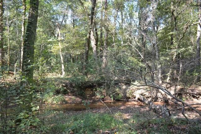 TBD River Road, Clio, AL 36017 (MLS #175617) :: Team Linda Simmons Real Estate