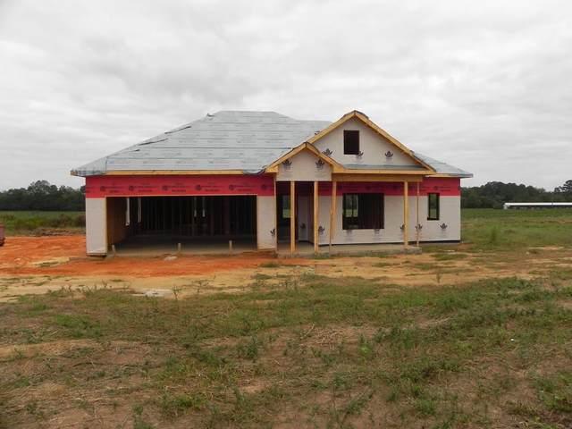 5630 Judge Logue Road, Newton, AL 36352 (MLS #179346) :: Team Linda Simmons Real Estate