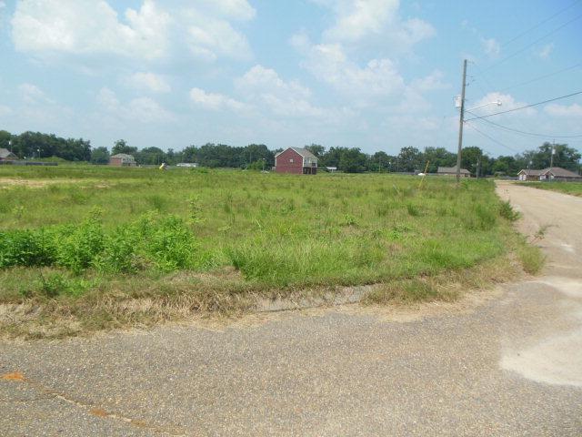 163 Rosa Ln., Midland City, AL 36350 (MLS #149879) :: Team Linda Simmons Real Estate