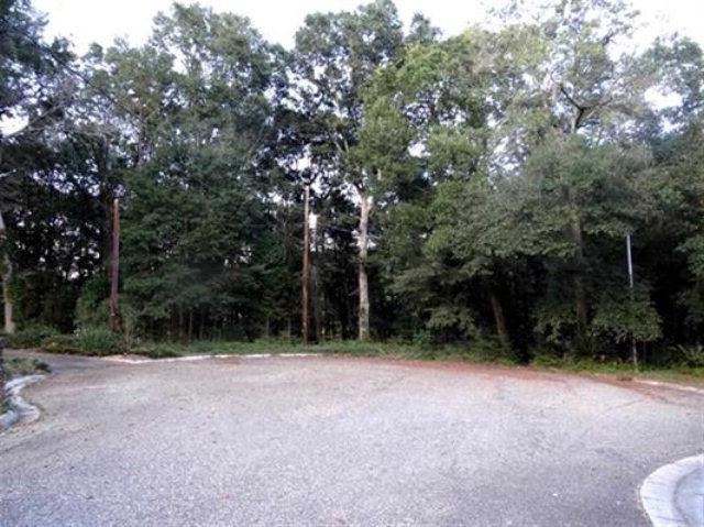 LOT18/19 High Bluff, Enterprise, AL 36330 (MLS #150938) :: Team Linda Simmons Real Estate