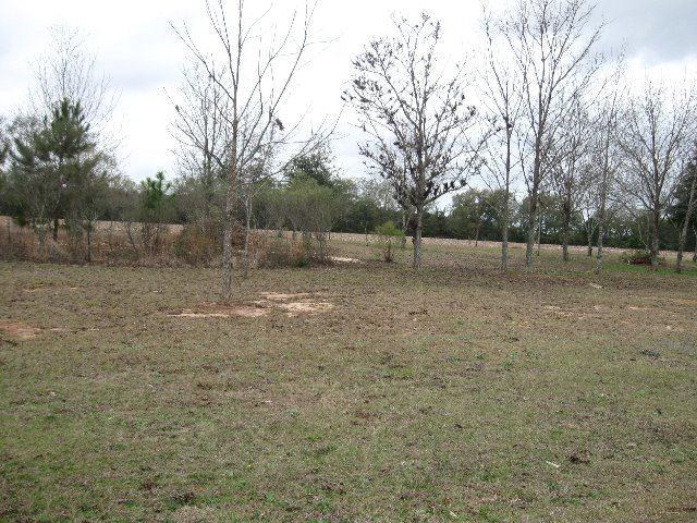 0 Magnolia And Gardenia Street, Midland City, AL 36350 (MLS #151046) :: Team Linda Simmons Real Estate
