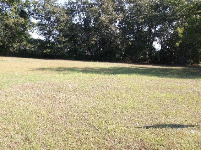 0 NE Springfield Lane, Dothan, AL 36303 (MLS #162404) :: Team Linda Simmons Real Estate