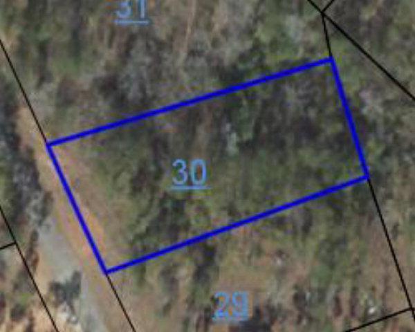 lot 575 Moore Circle, Abbeville, AL 36310 (MLS #163327) :: Team Linda Simmons Real Estate