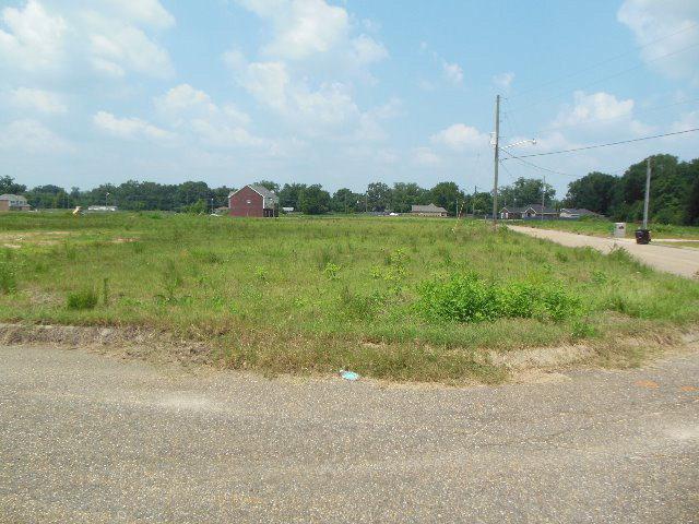 163 Rosa Ln., Midland City, AL 36350 (MLS #164694) :: Team Linda Simmons Real Estate