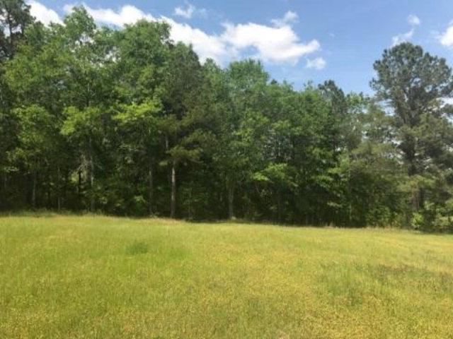 Lot 30 Ridge Drive, Headland, AL 36345 (MLS #164707) :: Team Linda Simmons Real Estate