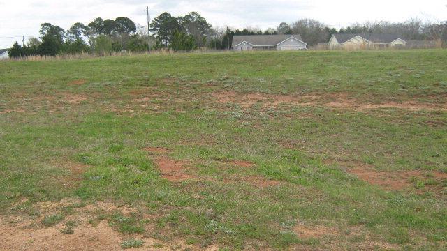 0 Gardenia & Magnolia, Midland City, AL 36350 (MLS #165133) :: Team Linda Simmons Real Estate
