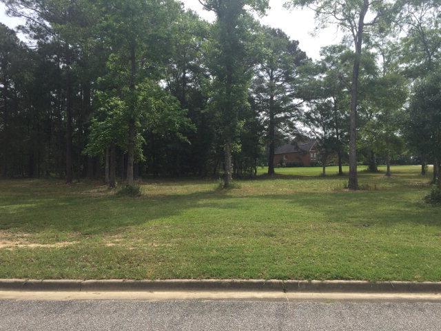 211 Thornberry Pl, Ashford, AL 36312 (MLS #165208) :: Team Linda Simmons Real Estate