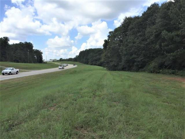 71 71 ACRES BOLL WEEVIL CIRCLE - Photo 1