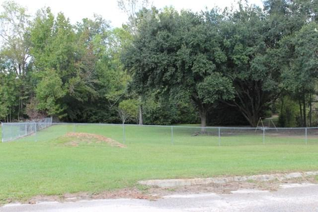 593 Graceland Drive, Geneva, AL 36340 (MLS #166847) :: Team Linda Simmons Real Estate