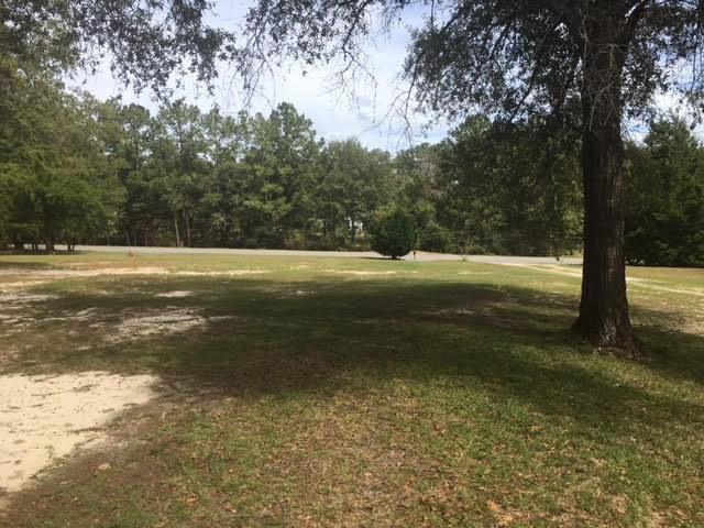 1148 County Road 109, Daleville, AL 36322 (MLS #167091) :: Team Linda Simmons Real Estate