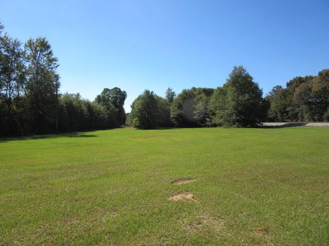 0 County Road 30, Ozark, AL 36360 (MLS #167198) :: Team Linda Simmons Real Estate