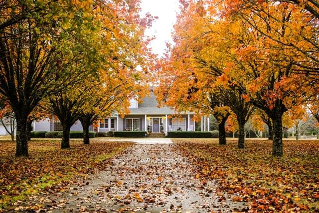 1235 Bethlehem, Midland City; Dothan, AL 36350 (MLS #167271) :: Team Linda Simmons Real Estate