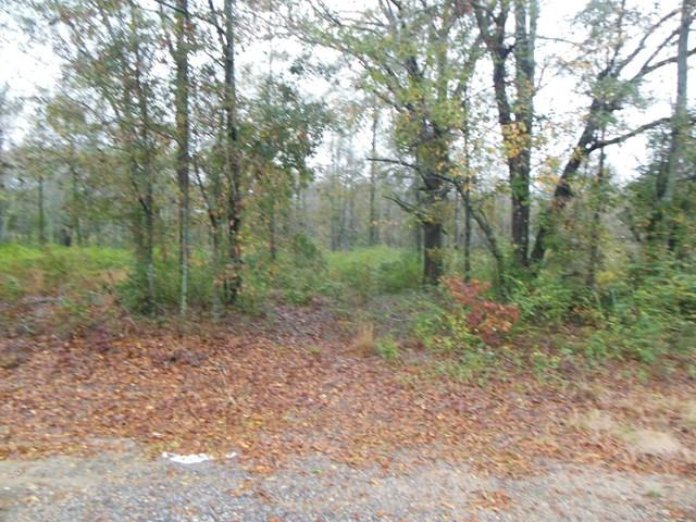 0 Lot 1 Sowell Rd., Dothan, AL 36301 (MLS #167485) :: Team Linda Simmons Real Estate