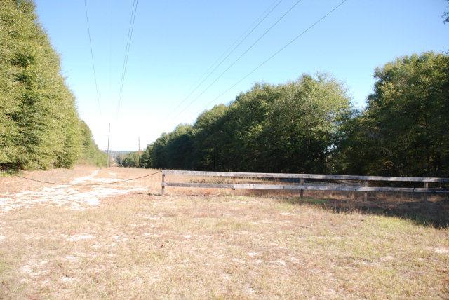 TBD Old Newton Road, Daleville, AL 36322 (MLS #167535) :: Team Linda Simmons Real Estate