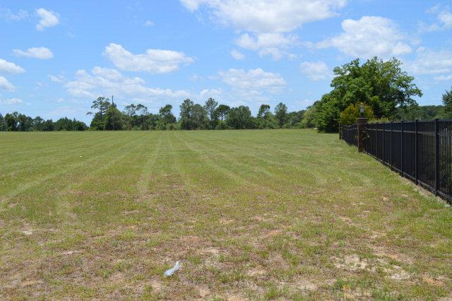 100 Turtleback Trail, Enterprise, AL 36330 (MLS #167790) :: Team Linda Simmons Real Estate