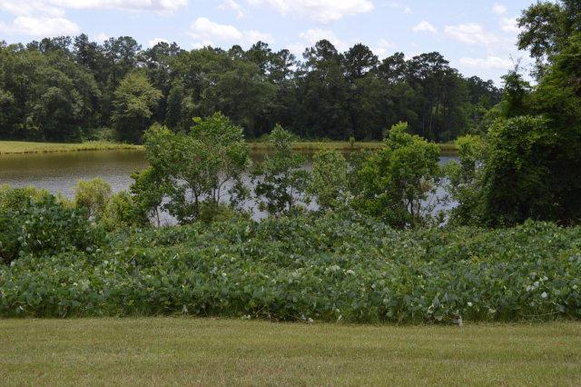 404 Turtleback Trail, Enterprise, AL 36330 (MLS #167796) :: Team Linda Simmons Real Estate